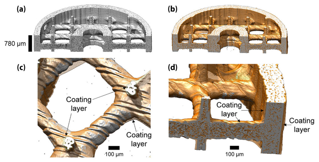 (a) Microtomographic reconstruction of the uncoated scaffold. (b) Superposed reconstruction of uncoated (gray) and coated (orange) absorbers. (c,d) Magnified views at different locations. The arrows denote the polymer coating layer.