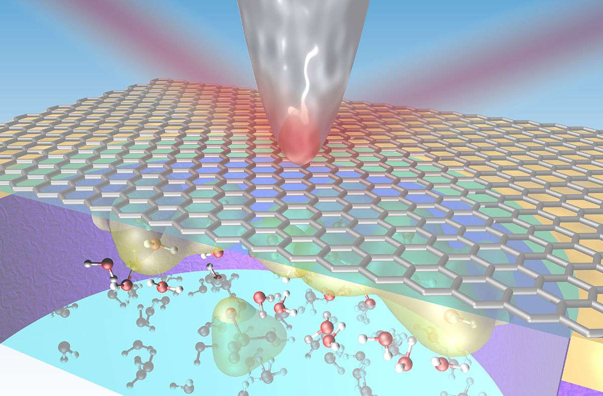 Infrared (IR) light is focused onto the sharp metallic tip of an atomic force microscope (AFM), enabling the acquisition of vibrational spectra from a graphene–liquid interface. Since the enhancement of the IR around the AFM tip decays exponentially with distance, with a decay length on the order of the tip radius, the resulting spectra should be sensitive to the layers of water within the decay length, which includes the first few molecular layers.