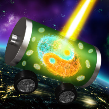 """Advanced spectroscopy at the ALS clearly resolves the activities of cations and anions (known in Chinese as """"yin"""" and """"yang"""" ions) in battery electrodes."""