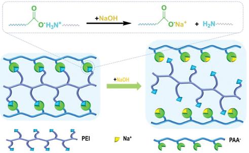 Schematic of New Revesible Crosslinked Polymer Binder