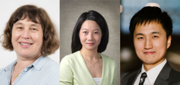 (from left) Marca Doeff, Guoying Chen, and Eongyu Yi (Credit: Berkeley Lab)