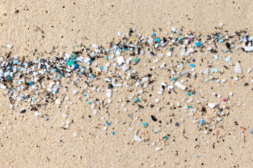 Image of microplastics on the beach. (Credit: Shutterstock/Eric Dale)